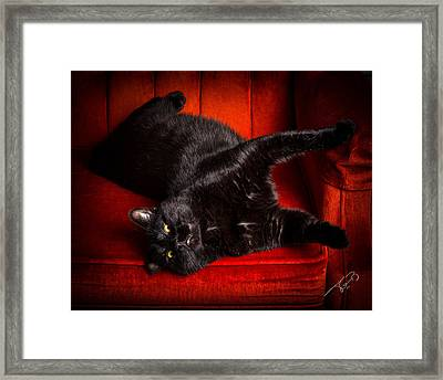 As Sexy As It Gets Framed Print by Tom Buchanan