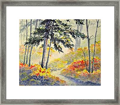 As The Fog Lifts Framed Print by Carolyn Rosenberger