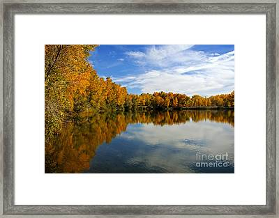 As The Leaves Turn Framed Print by Bob Hislop