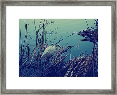 As The Light Fades Framed Print by Laurie Search