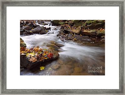 As The Stream Runs By In Autumn Framed Print