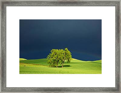 As The Sun Returns Framed Print