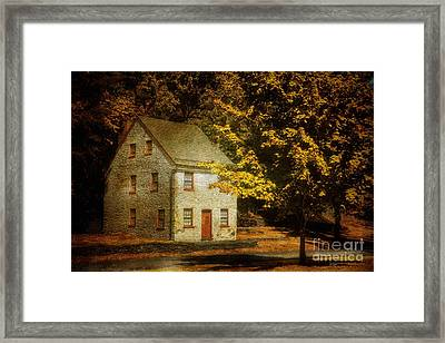 As The World Passes By Framed Print by Lois Bryan