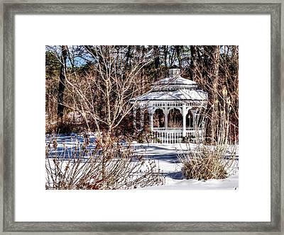 As White As  Snow Framed Print by Rick Todaro
