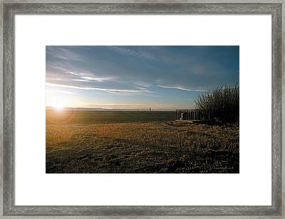As You Lie In Fields Of Gold Framed Print
