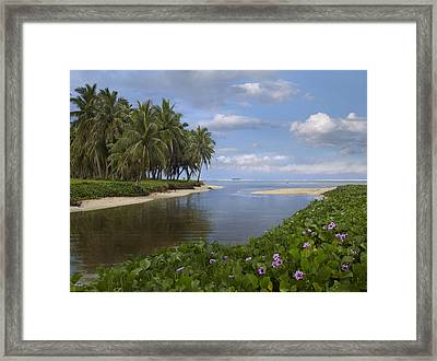 Asan Beach In Guam Framed Print