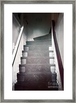 Ascend Framed Print by Margie Hurwich