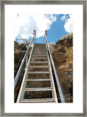 Framed Print featuring the photograph Ascending by Debra Thompson