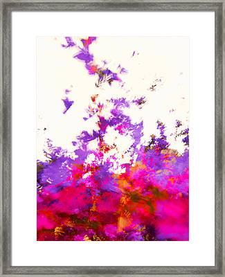 Framed Print featuring the photograph Ascending Floral Abstract by Paul Cutright