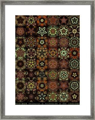 Asclepiads 6x8 Framed Print by Ann Stretton