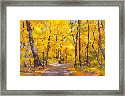 Ash Trees At Fall In The Morton Arboretum Framed Print