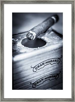Ashes Of Relaxation Framed Print