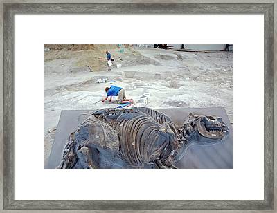 Ashfall Fossil Beds Display Framed Print by Jim West