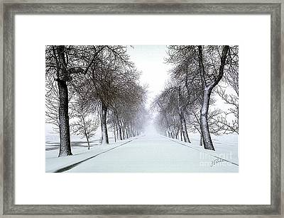 Framed Print featuring the photograph Ashlane I by Jessie Parker