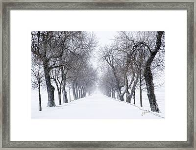 Framed Print featuring the photograph Ashlane II by Jessie Parker