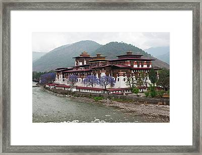 Asia, Bhutan Exterior View Of Punakha Framed Print by Jaynes Gallery