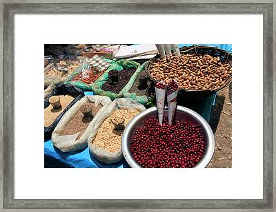 Asia, India, Darjeeling Framed Print by Kymri Wilt