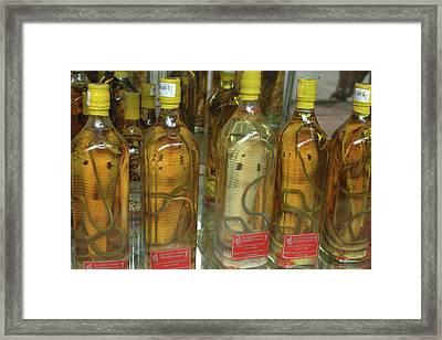 Asia, Vietnam Snake Wine For Sale Framed Print by Kevin Oke