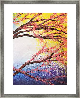 Asian Bloom Triptych 3 Framed Print by Darren Robinson