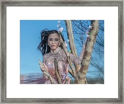 Asian Blossom Framed Print