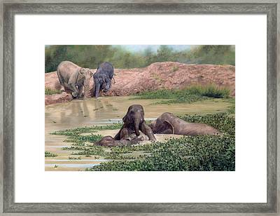Asian Elephants - In Support Of Boon Lott's Elephant Sanctuary Framed Print