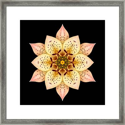 Framed Print featuring the photograph Asiatic Lily Flower Mandala by David J Bookbinder