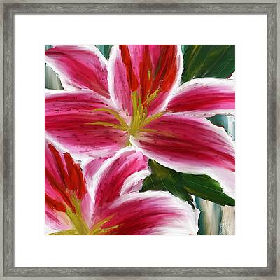 Asiatic Lily- Asiatic Lily Paintings- Pink Paintings Framed Print by Lourry Legarde