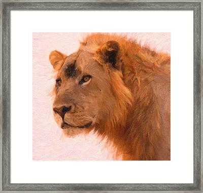 Aslan The King Art Framed Print