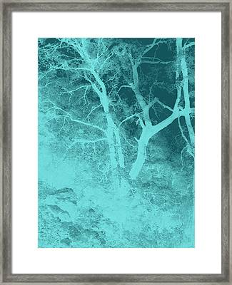 Asleep In The Woods Framed Print by Wendy J St Christopher
