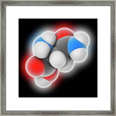 Asparagine Molecule Framed Print by Laguna Design