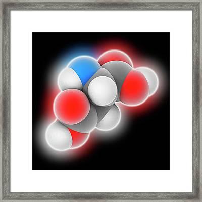 Aspartic Acid Molecule Framed Print by Laguna Design