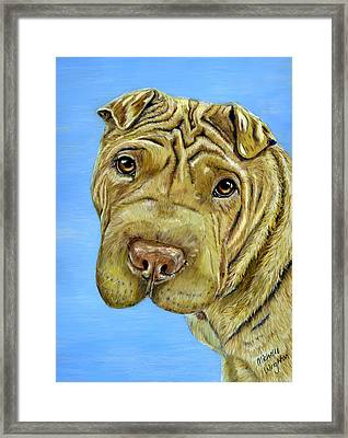 Beautiful Shar-pei Dog Portrait Framed Print