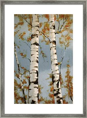 Aspen Autumn Framed Print by Richard Hinger