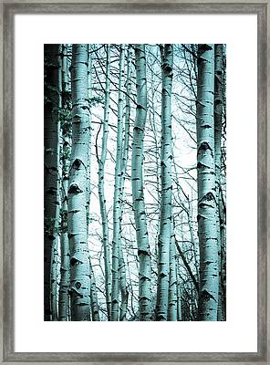 Aspen Blues Framed Print by Debbie Karnes