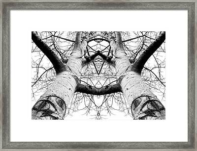 Aspen Cathedral Framed Print by James K. Papp