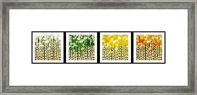 Aspen Colorado Abstract Horizontal 4 In 1 Collection Framed Print
