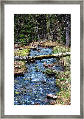 Framed Print featuring the photograph Aspen Crossing Mountain Stream by Barbara Chichester