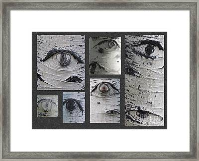 Aspen Eyes Are Watching You Framed Print