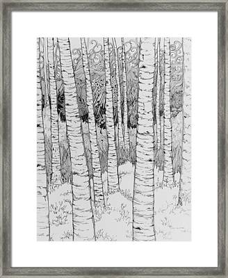 Aspen Forest Framed Print by Terry Holliday