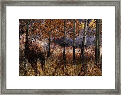 Aspen Ghost Horse Framed Print by Wishes and Whims Originals By Michelle Jensen