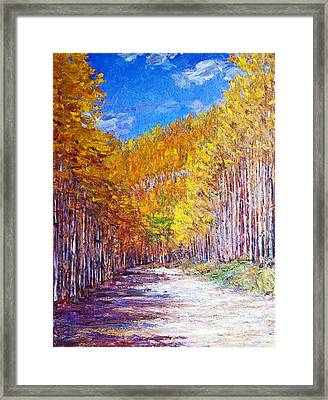 Aspen Glory Framed Print by Steven Boone