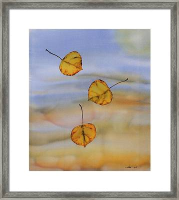 Aspen In Fall Framed Print by Carolyn Doe