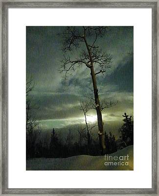 Aspen In Moonlight Framed Print