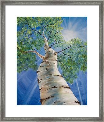 Aspen Light Framed Print