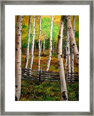 Aspen Meadow Framed Print by Jessica Tookey