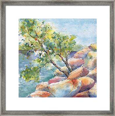 Aspen On The Rocks Framed Print