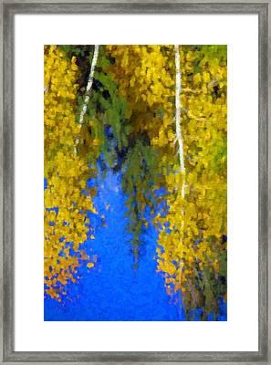 Aspen Reflection Framed Print by Pat Now