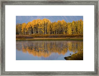 Framed Print featuring the photograph Aspen Reflection by Sonya Lang