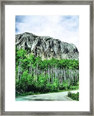 Aspen Road Framed Print by Dan Sproul