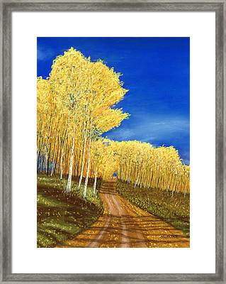 Aspen Road Framed Print